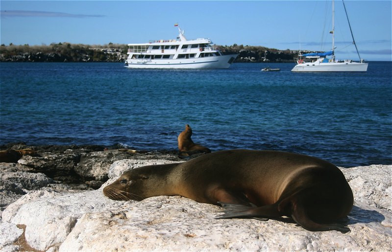 career break, career break travel, career break advice, travel the world, Ecuador travel, the galapagos islands