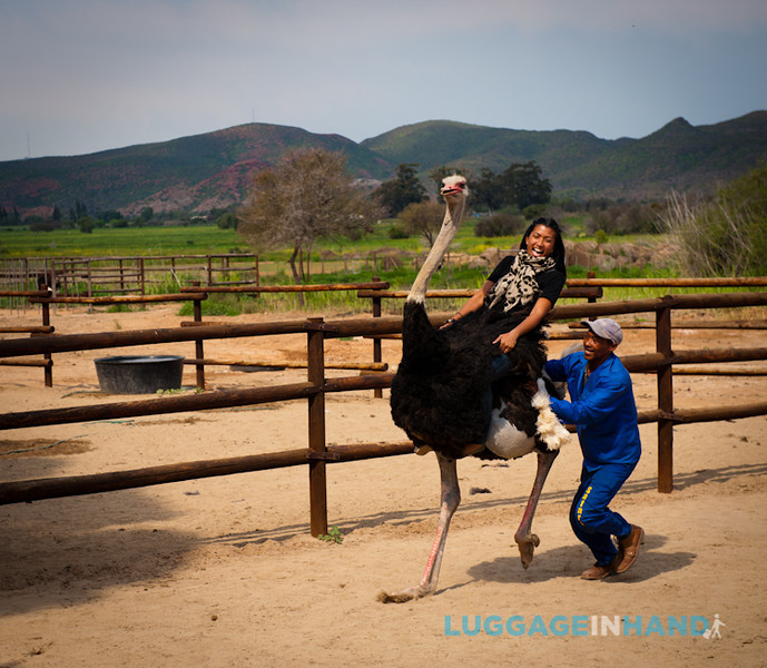 career break travel adventures in South Africa, Outdshoorn